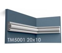 ТМ5001 молдинг из гипса АртМодуль h20х10мм