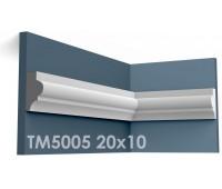 ТМ5005 молдинг из гипса АртМодуль h20х10мм