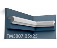 ТМ5007 молдинг из гипса АртМодуль h25х25мм