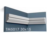 ТМ5017 молдинг из гипса АртМодуль h30х15мм