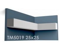 ТМ5019 молдинг из гипса АртМодуль h25х25мм