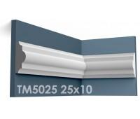 ТМ5025 молдинг из гипса АртМодуль h25х10мм