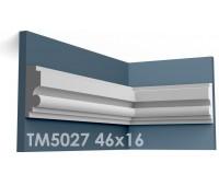 ТМ5027 молдинг из гипса АртМодуль h46х16мм