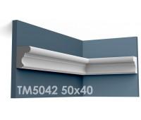 ТМ5042 молдинг из гипса АртМодуль h50x40мм