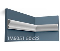 ТМ5051 молдинг из гипса АртМодуль h50x22мм