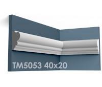 ТМ5053 молдинг из гипса АртМодуль h40x20мм