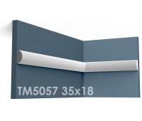 ТМ5057 молдинг из гипса АртМодуль h35х18мм