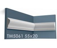 ТМ5061 молдинг из гипса АртМодуль h55х20мм