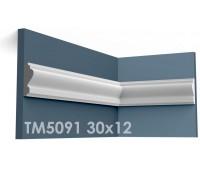 ТМ5091 молдинг из гипса АртМодуль h30х12мм
